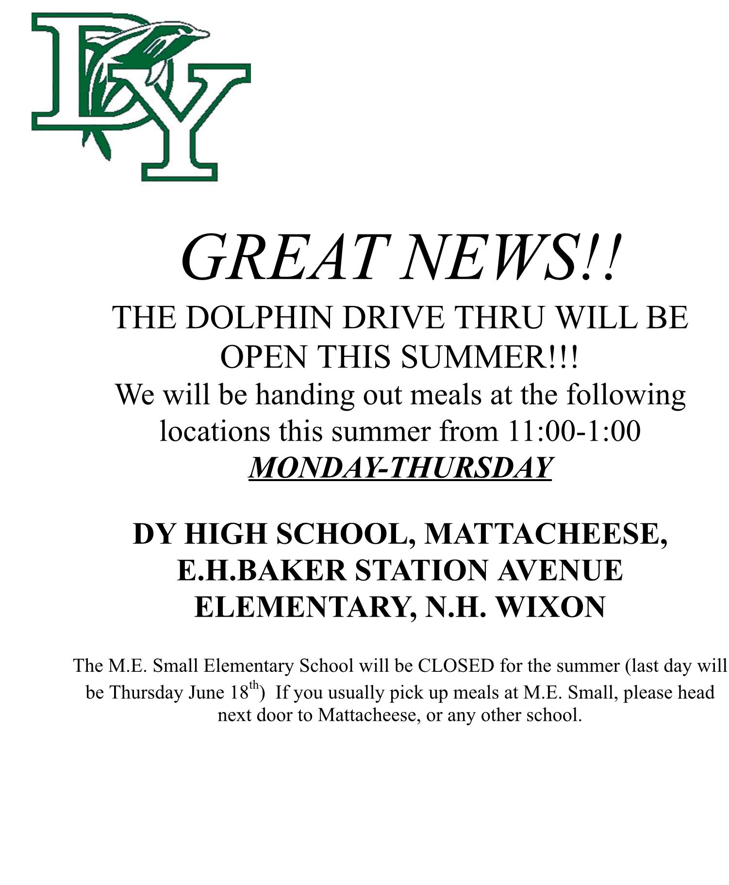 Dolphin Drive Through Summer